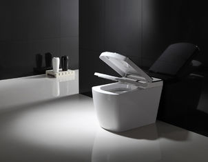 China Electric Bathroom One Piece Toilet , Smart Bidet Toilet Female Washing supplier