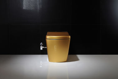 China Golden Intelligent Auto Wash Toilet Personal Hygiene Cleaning smart toilet supplier