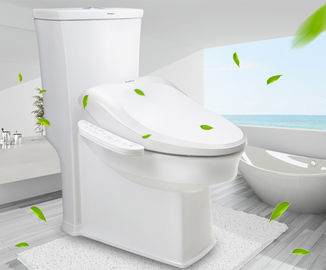 China Health Care Customized Smart Toilet Bidet Seat Instant Heat Type For Bathroom supplier